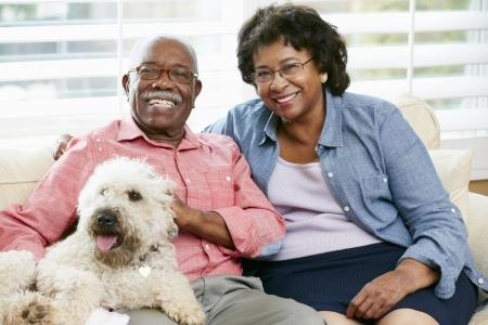Happy elderly couple with a dog