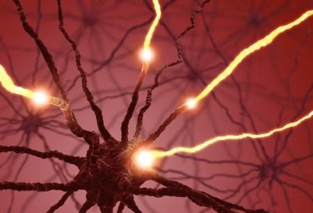 Neuron Exercise