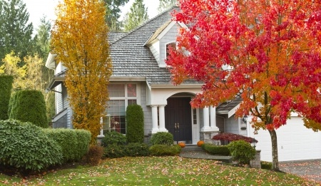 House_Autumn